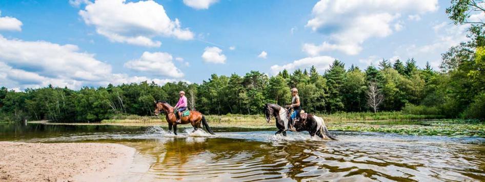 Paardrijden ruiters door het water