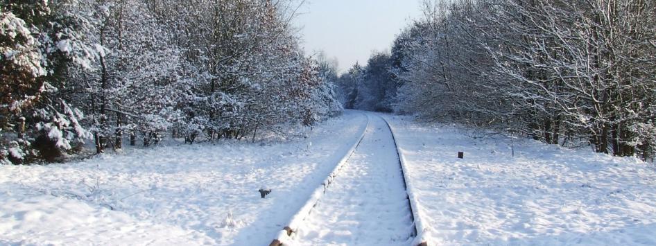 Sneeuw de Meinweg