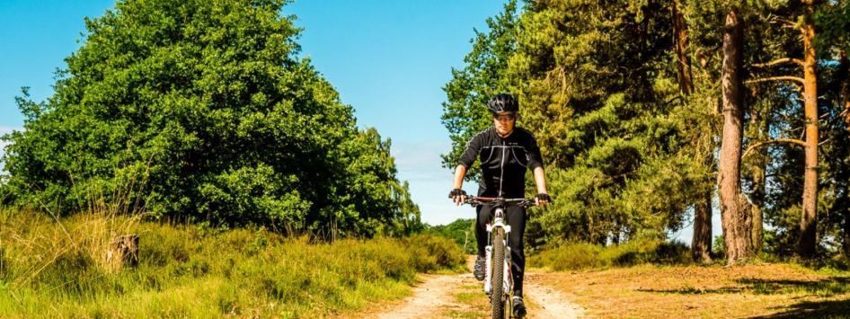 Mountainbiker bossen groene natuur